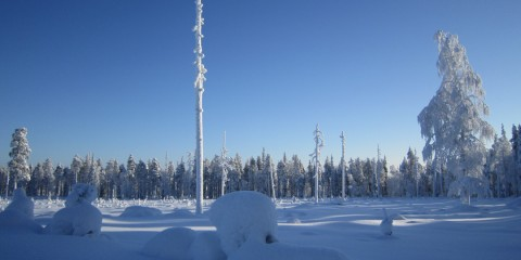 Finnland – Lappland