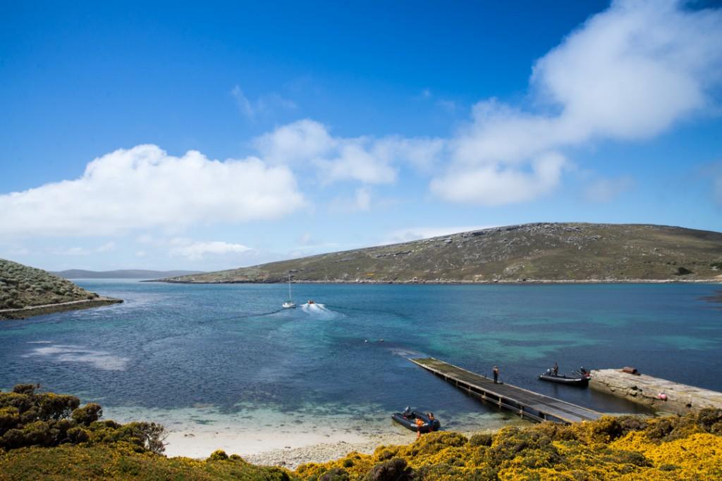 Wespoint Island auf den Falklandinseln