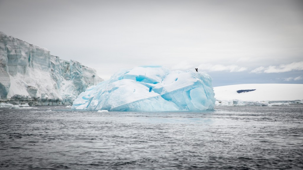 Eisberge wohin das Auge reicht
