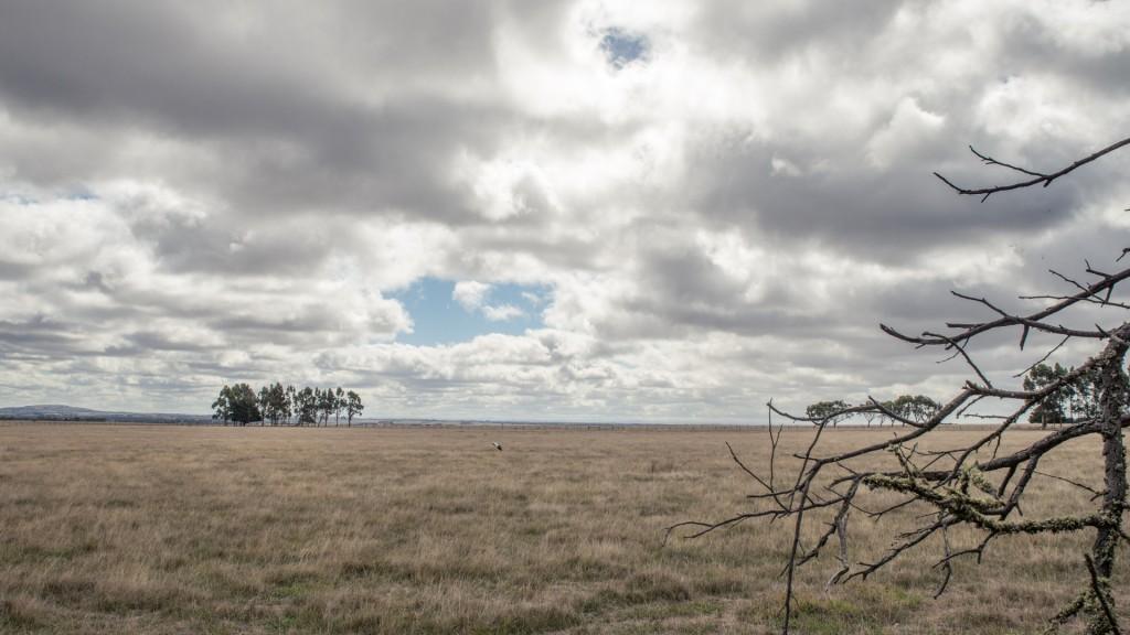 Wechselnde Landschaft