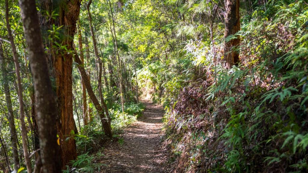 Wanderweg im 'Hinterland'