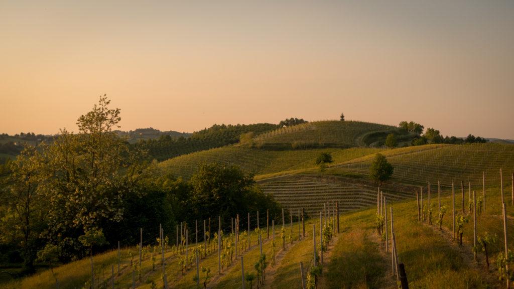 Piemont (10 of 24)