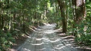 Strassen auf Fraser Island